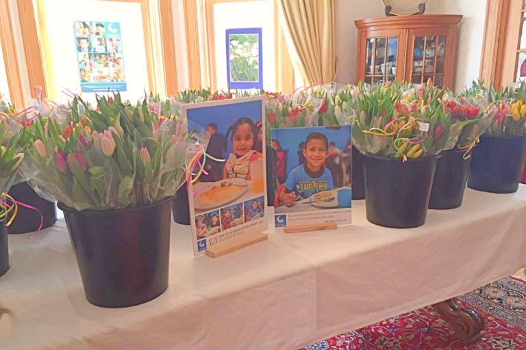 Canada vende tulipanes a beneficio de FIAMBRE